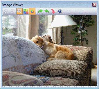 Floating Image Viewer